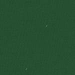 ТиСи 120 зеленый